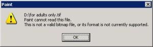invalid file