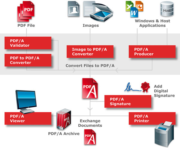 Complete overview of the PDF/A processes, with particular focus on the development of digital documents.